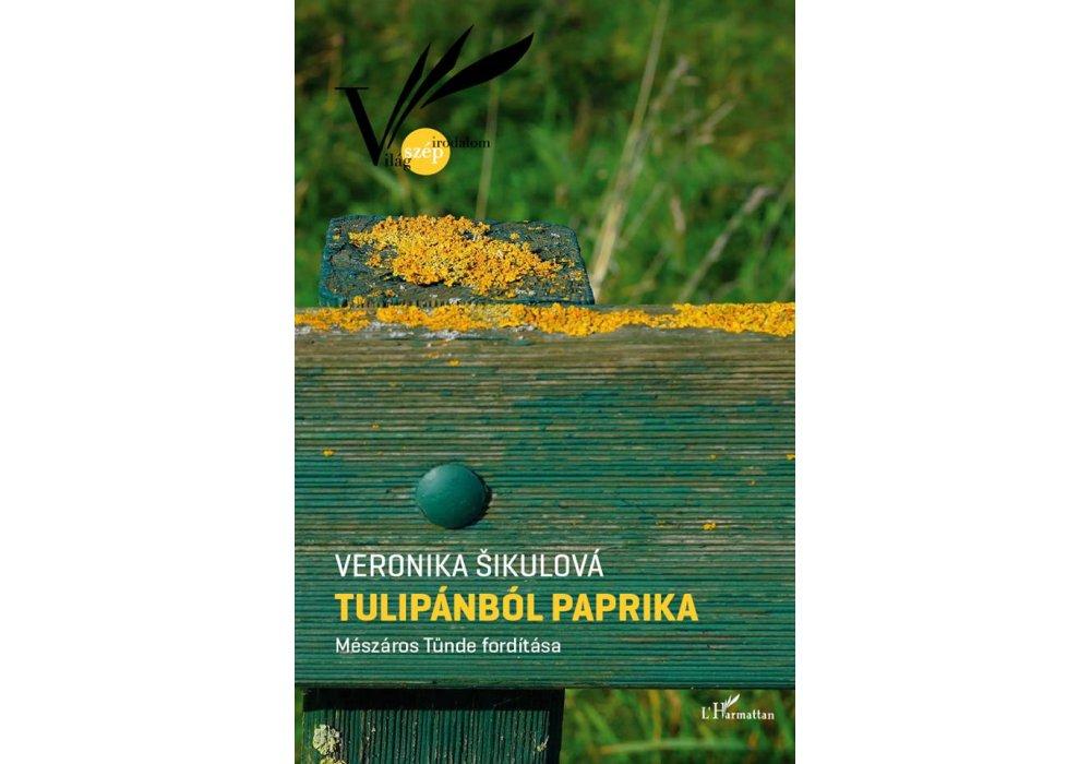 Naša literatúra na festivale v Budapešti - 3