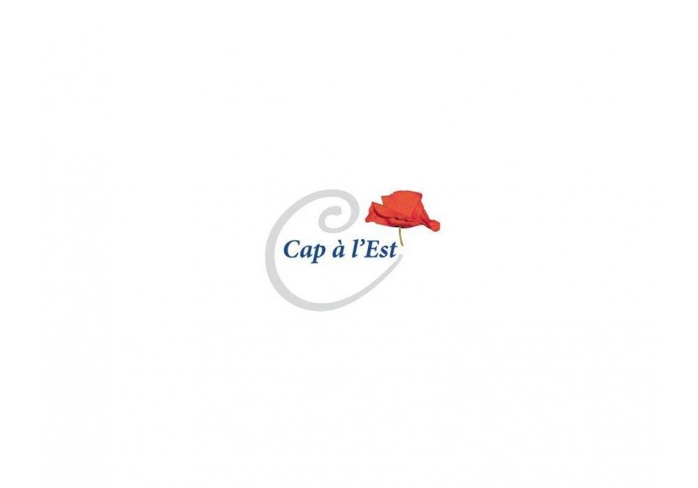 Začína sa 19. ročník festivalu Cap à l'Est - 0