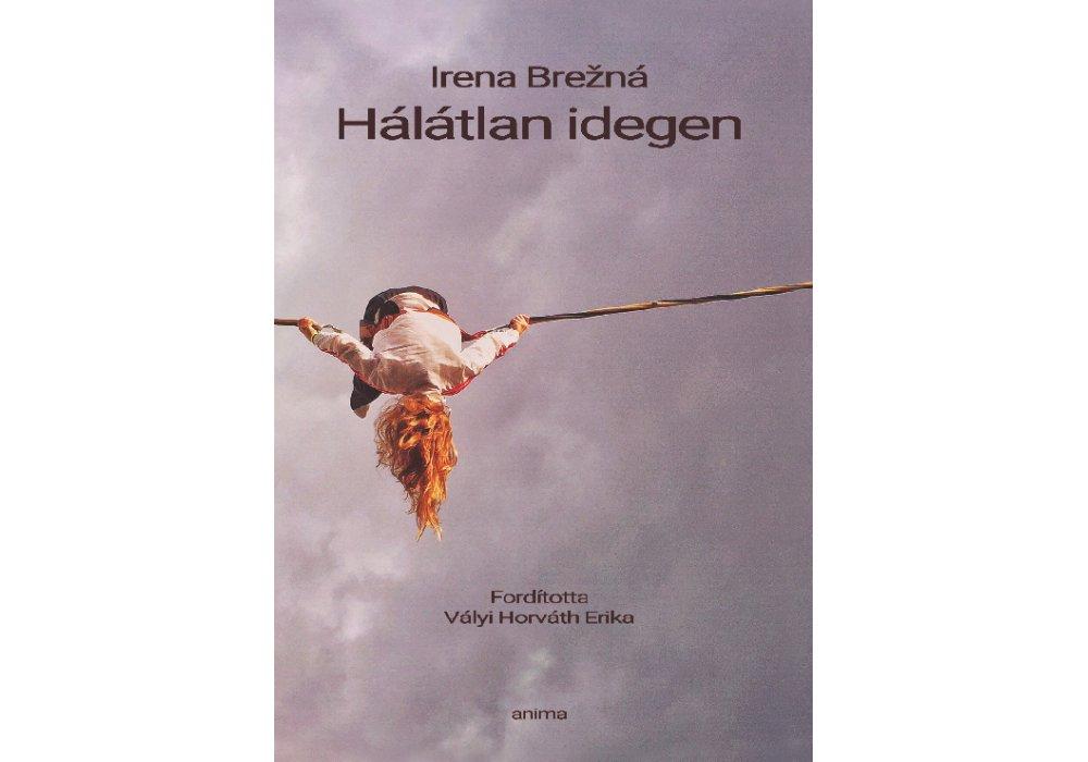 Slovenskí autori na knižnom festivale v Budapešti - 0