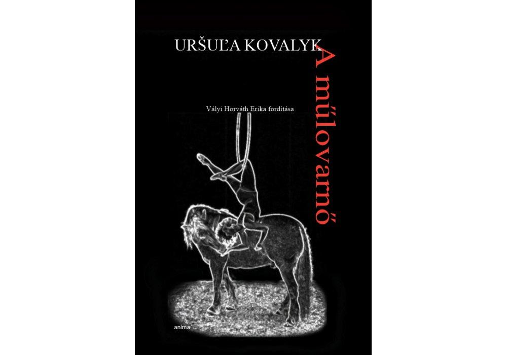 Slovenskí autori na knižnom festivale v Budapešti - 1