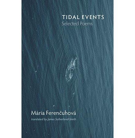 Tidal Events, Maria Ferencuhova
